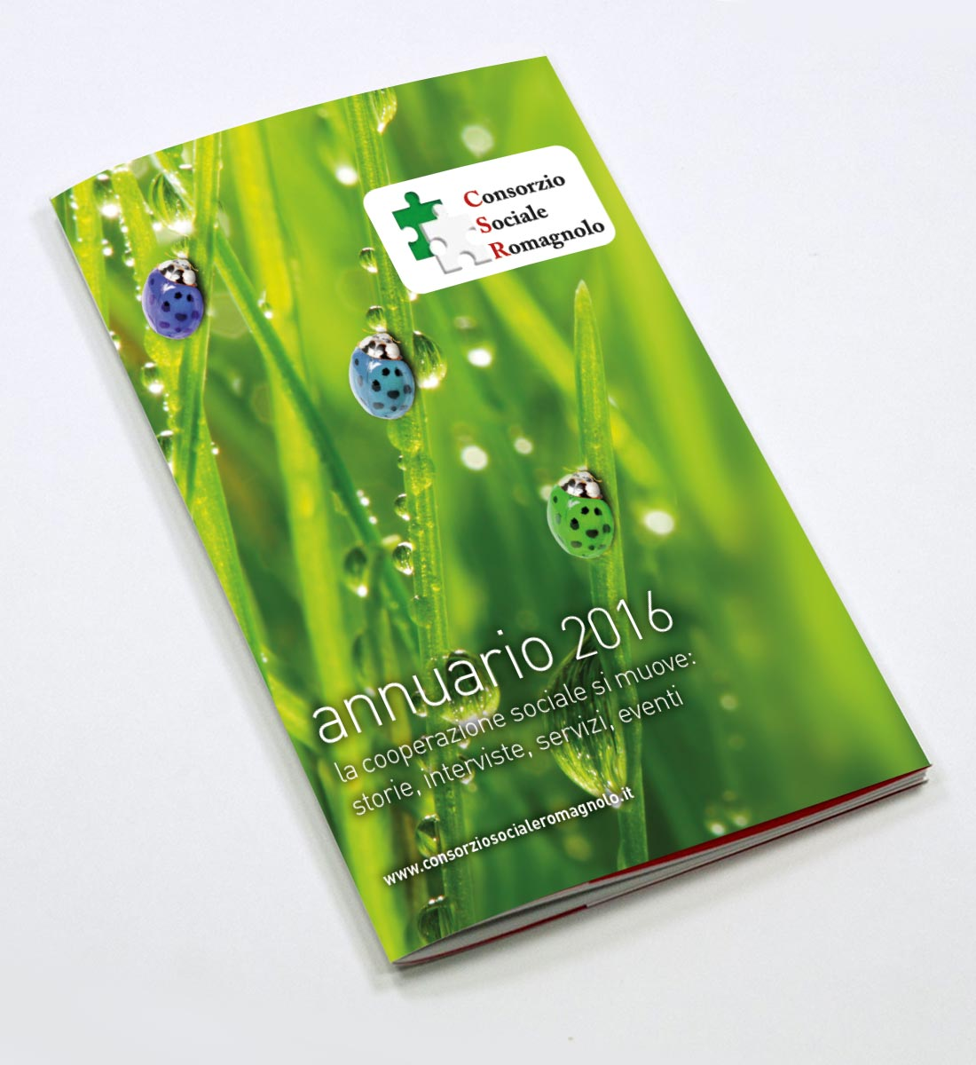 Annuario csr 2016 samuele grassi for Clienti sinonimo
